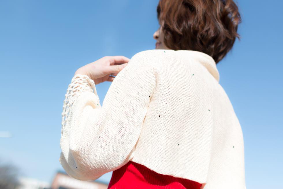 羽織りもの|パピヨン