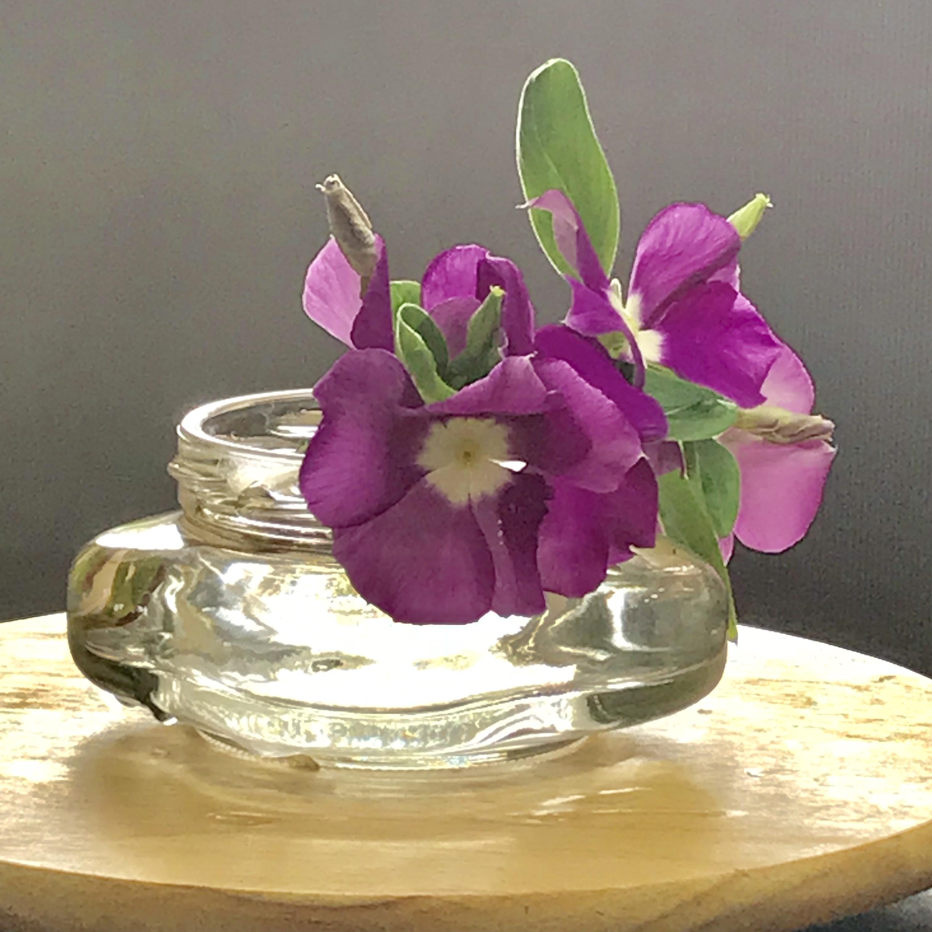 涼しさのおもてなし。庭のお花