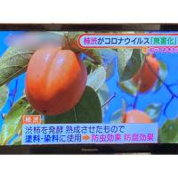 柿渋を発行させて塗料や染色に使われている